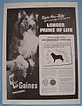1953 Gaines Dog Meal with Lassie (Look-Alike)
