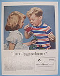 Click here to enlarge image and see more about item 13010: Vintage Ad: 1955 American Cyanamid Company