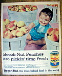 1958 Beech-Nut Strained Peaches with Baby & Peaches