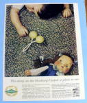 1959 Roxbury Carpet with Baby Laying