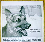 Click to view larger image of 1959 Milk Bone Dog Biscuits with Shepherd by Mary Baker (Image2)