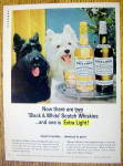 Click to view larger image of 1965 Black and White Whiskey w/ Black & White Scotties (Image1)