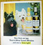 Click to view larger image of 1965 Black and White Whiskey w/ Black & White Scotties (Image2)
