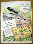 1948 Whitman's Sampler with Easter Bunny Holding Candy