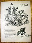 1953 Texaco Gasoline w Dalmatians & Butterflies