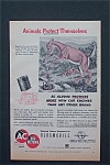 1954  AC Oil Filters with Animals Protect Themselves