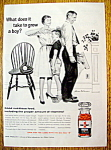 Click here to enlarge image and see more about item 7785: Vintage Ad: 1961 One A Day Vitamins By Stevan Dohanos