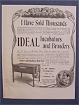 Click here to enlarge image and see more about item 8378: Vintage Ad: 1904 Ideal Incubators & Brooders
