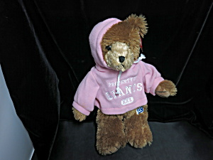 Nfl Giants Teddy Bear Pink Hoodie Good Stuff 15 Inch