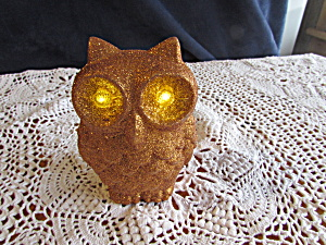 Light Up Blinking Eye Owl Battery Operated Light
