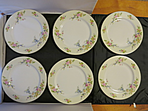 Meito China Floral Plate 10 inch Made in Japan set (Image1)