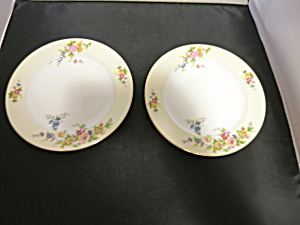 Meito China Floral Plate 8 inch Made in Japan set of 2 (Image1)