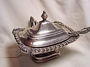 Crown Silver Plated Covered Condiment Spoon (Image1)