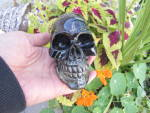 Click here to enlarge image and see more about item 1005-16: Nemesis Now Skull Summit 2004 signed lucite