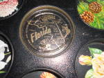 Click here to enlarge image and see more about item MB-M295: Florida Souvenir Tin Drink Serving Tray