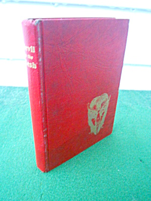 Devil in the Flesh Raymond Radiguet 1948 Book (Image1)