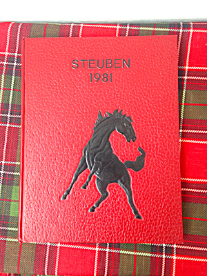 1981 Steubenville H.s. Yearbook
