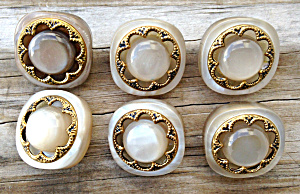 (6) Matching Vintage Fur Coat Buttons