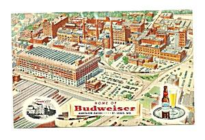 Anheuser Busch Plant St. Louis  MO Postcard (Image1)