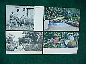 Early Jamaica Postcard Collection (Image1)