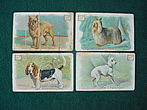 Early, Dwight Soda Dog Trade Cards (Image1)