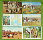 Lg. Indian Postcard Collection