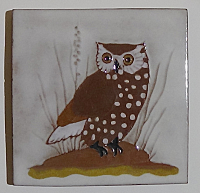 Gaskins Gila Arts Burrowing Owl Tile