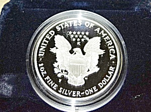 American Silver Eagle 1996 proof (Image1)