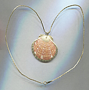 Japan, Seashell W/gold Trim, Gold Tone Chain Necklace