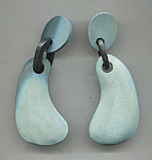 Blue Wood W/black Ring Pierced Earrings