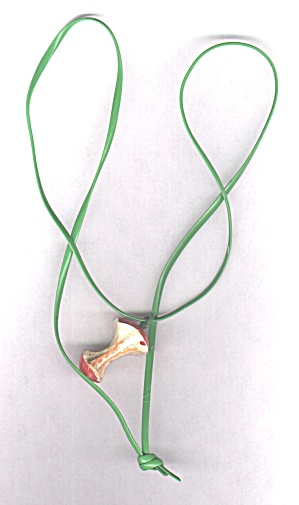 PLASTIC APPLE CORE NECKLACE (Image1)