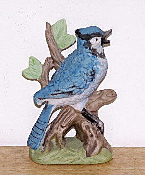 MIC BLUEBIRD IN TREE BRANCH (Image1)