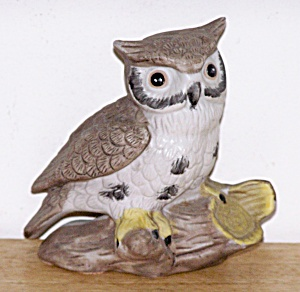 OWL SITTING ON BRANCH (Image1)