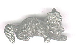 FLUFFY CAT (Image1)
