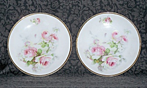 HAND PAINTED PAIR OF PLATES, GERMANY (Image1)