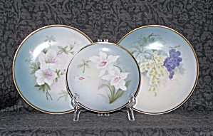 HAND PAINTED SET OF 3 PLATES, BAVARIA (Image1)
