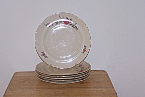 TULOWICE FLOWERED DINNER PLATE (Image1)