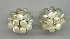 White & Clear Cluster Plastic Earrings