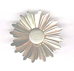 Sarah Coventry Gold Sunburst Pin