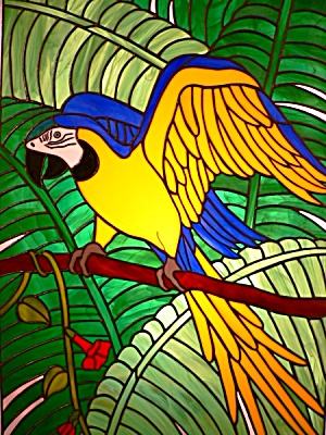 Pabo - Blue and Gold Macaw (Image1)