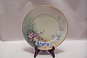 Vintage Nippon Handpainted Collector Plate