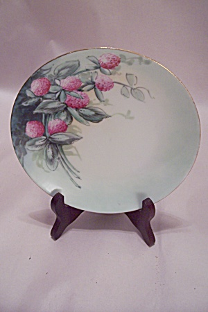 Handpainted Bavarian China Collector Plate