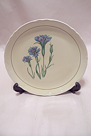 Princess Floral Collector Plate