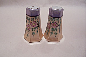 Occupied Japan Handpainted Lustre Salt & Pepper Shakers
