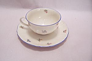 Eschenbach Bavarian Teacup & Saucer Set (Image1)