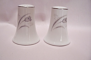 Creative Royal Elegance Fine China Salt & Pepper Shaker (Image1)