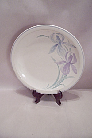 Pfaltzgraff Spring Song Pattern Dinner Plate