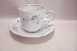 Johann Haviland Blue Garland China Footed Cup & Saucer