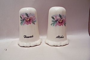 Hawaii Aloha Souvenir Salt & Pepper Shakers Set