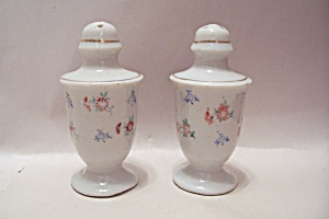 Occupied Japan Flower Design Salt & Pepper Shakers Set
